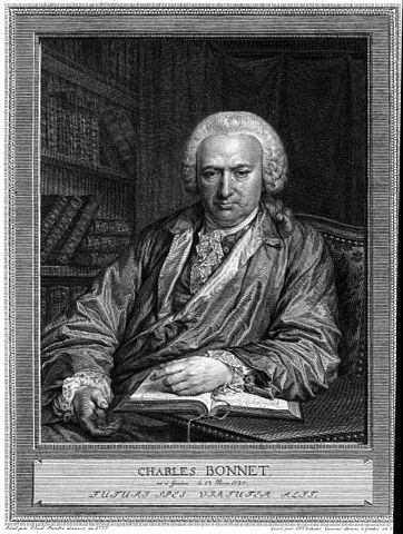 Portrait of Charles Bonnet, engraving by Johan Frederik Clemens (1779) after a painting by Jens Juel (1777)