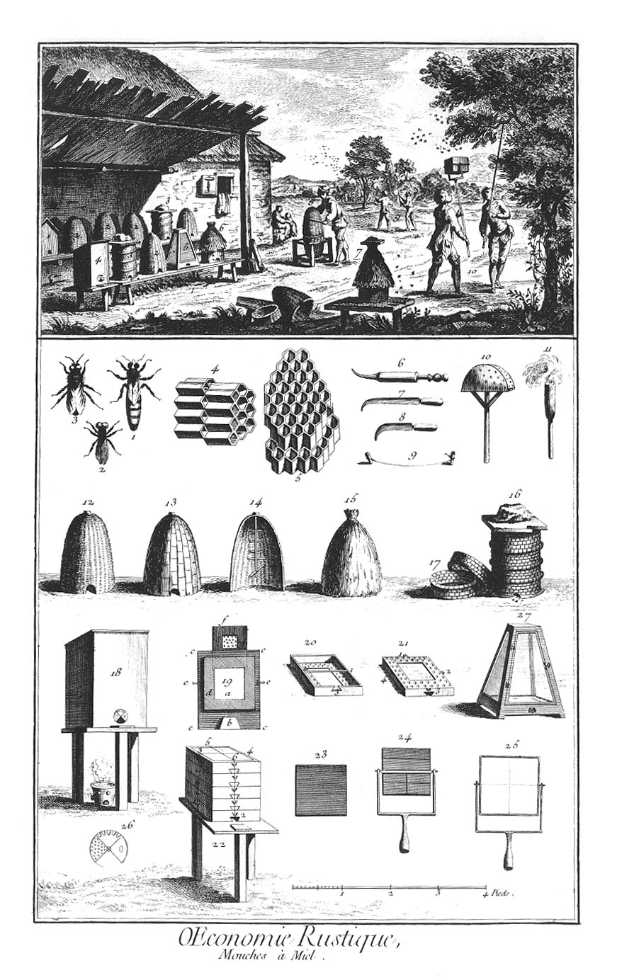 'Mouches à miel, ruches' (1762) from Diderot and D'Alembert's Encyclopédie